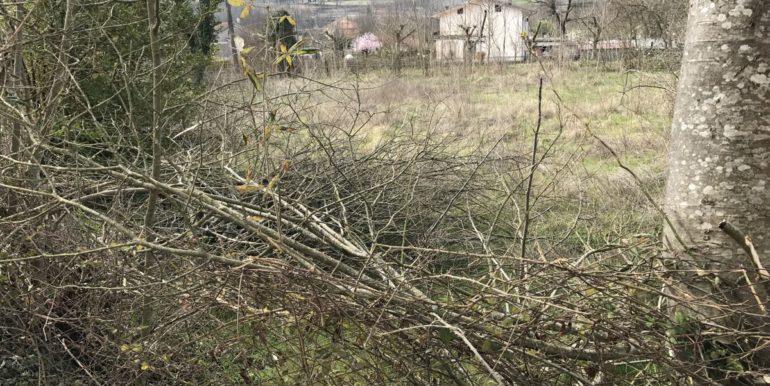 casale-rustico-vicalvi-frosinone-lepeinia-immobiliare-supino-terreno-4
