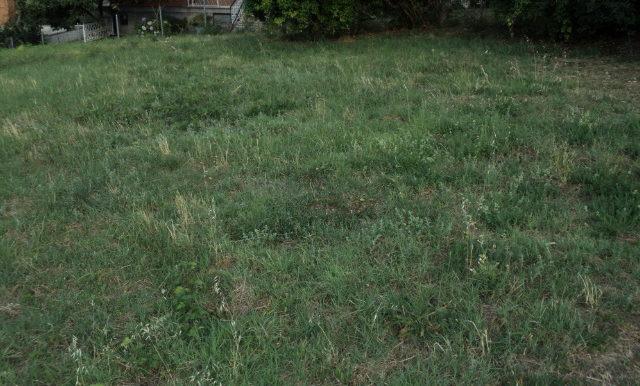 terreno-edificabile-vendesi-viaselce-supino-frosinone-lepinia-immobiliare-4