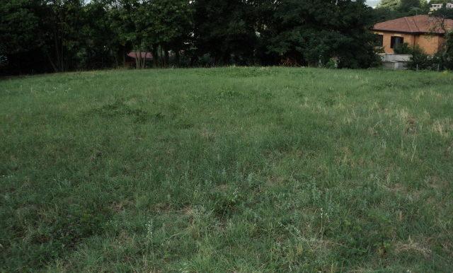 terreno-edificabile-vendesi-viaselce-supino-frosinone-lepinia-immobiliare-5