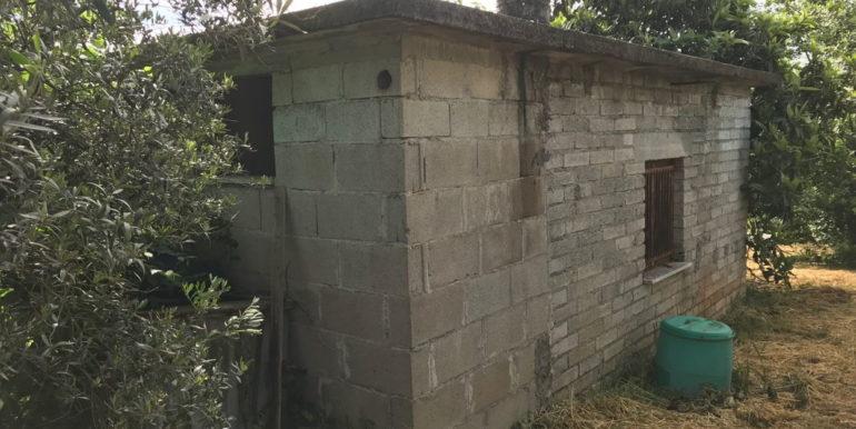 rudere-con-terreno-ferentino-cartiera-frosinone-29000-euro-lepinia-immobiliare-supino-36
