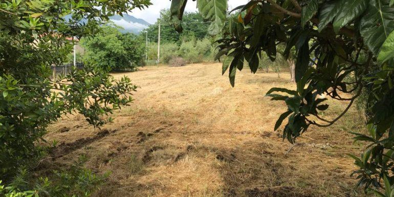 rudere-con-terreno-ferentino-cartiera-frosinone-29000-euro-lepinia-immobiliare-supino-37