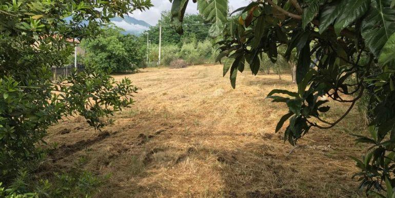 rudere-con-terreno-ferentino-cartiera-frosinone-29000-euro-lepinia-immobiliare-supino-38