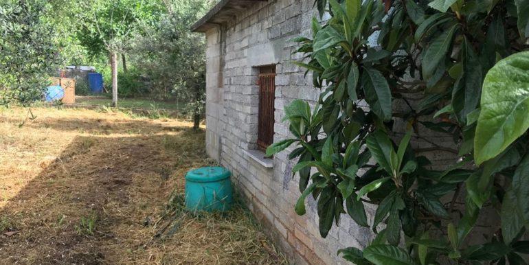 rudere-con-terreno-ferentino-cartiera-frosinone-29000-euro-lepinia-immobiliare-supino-42