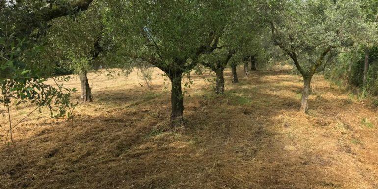 rudere-con-terreno-ferentino-cartiera-frosinone-29000-euro-lepinia-immobiliare-supino-44