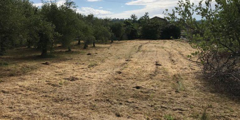 rudere-con-terreno-ferentino-cartiera-frosinone-29000-euro-lepinia-immobiliare-supino-45