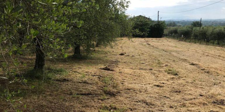rudere-con-terreno-ferentino-cartiera-frosinone-29000-euro-lepinia-immobiliare-supino-50