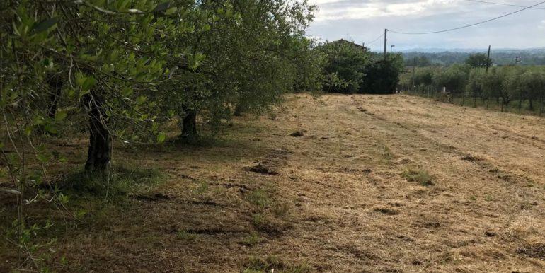 rudere-con-terreno-ferentino-cartiera-frosinone-29000-euro-lepinia-immobiliare-supino-51