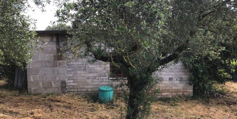 rudere-con-terreno-ferentino-cartiera-frosinone-29000-euro-lepinia-immobiliare-supino-65