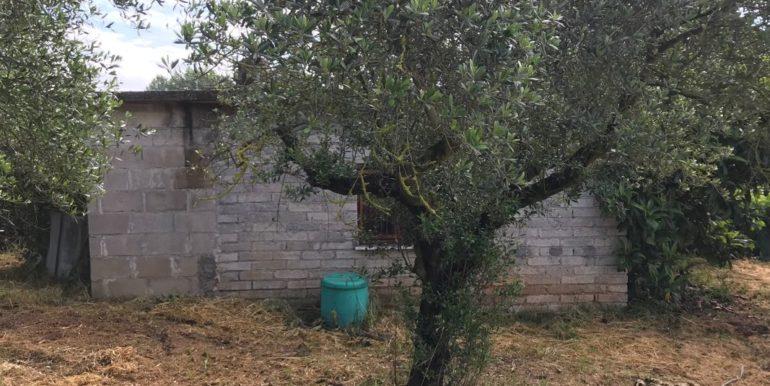 rudere-con-terreno-ferentino-cartiera-frosinone-29000-euro-lepinia-immobiliare-supino-66