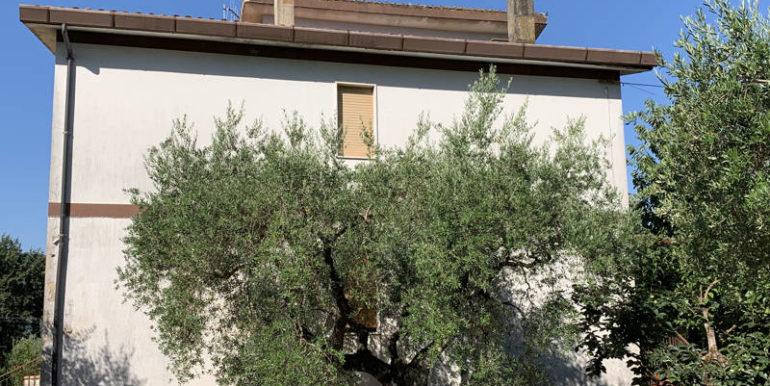 nuda-proprieta-vendesi-in-amaseno-frosinone-lepinia-immobiliare-supino-13
