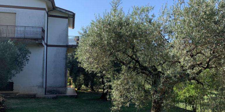 nuda-proprieta-vendesi-in-amaseno-frosinone-lepinia-immobiliare-supino-19