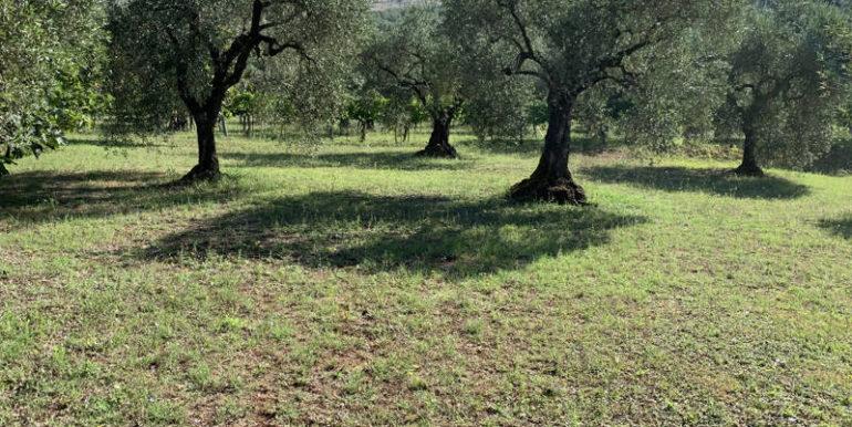 nuda-proprieta-vendesi-in-amaseno-frosinone-lepinia-immobiliare-supino-20