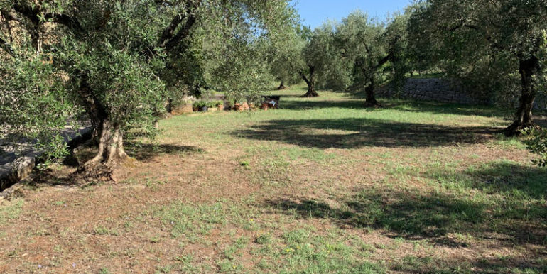 nuda-proprieta-vendesi-in-amaseno-frosinone-lepinia-immobiliare-supino-8