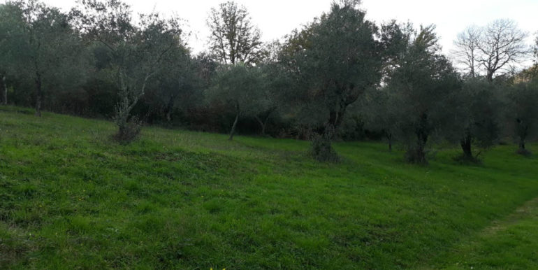 casale-con-terreno-vendesi-prossedi-latina-lepinia-immobiliare-supino-frosinone-1-copia