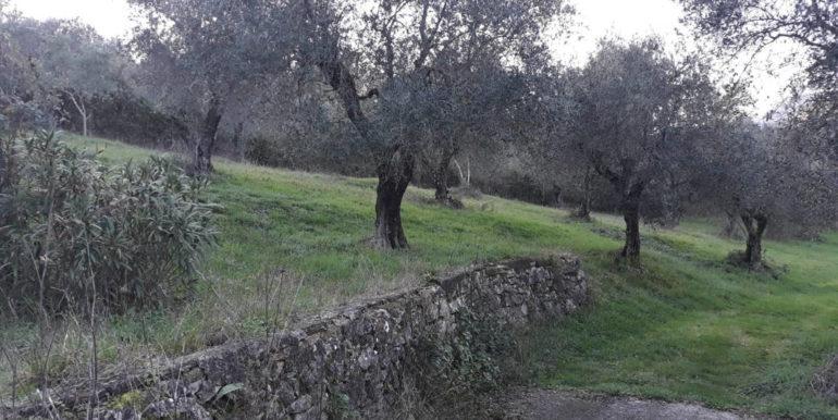 casale-con-terreno-vendesi-prossedi-latina-lepinia-immobiliare-supino-frosinone-10-copia