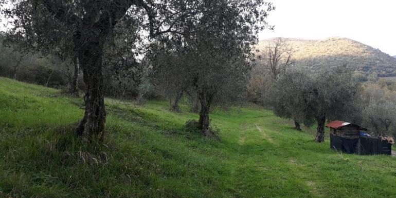 casale-con-terreno-vendesi-prossedi-latina-lepinia-immobiliare-supino-frosinone-16-copia