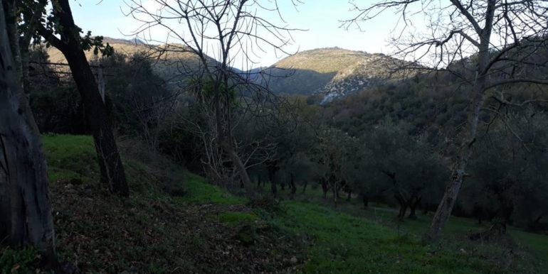 casale-con-terreno-vendesi-prossedi-latina-lepinia-immobiliare-supino-frosinone-7-copia